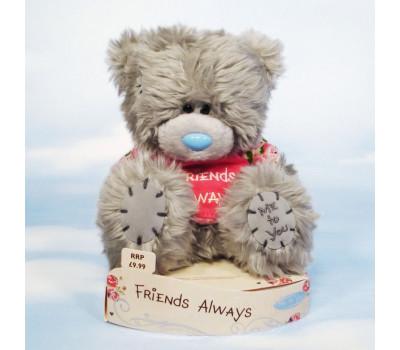 Тедди в маечке