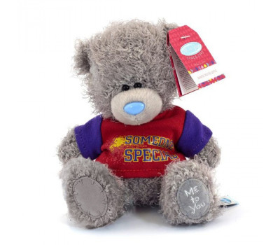 Медвежонок Тедди в футболке SOMEONE SPECIAL