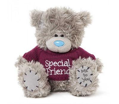 Мишка Тедди MTY  в футболке Special Friend