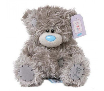 Мишка Тедди MTY - Классический 23 см